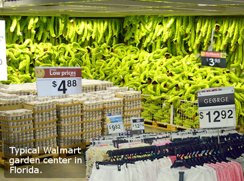 Man Sues Walmart After Being Bitten By Snake, But Keeps Going Back