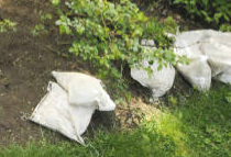 Verizon Buries Bags Of Rocks In Woman's Yard