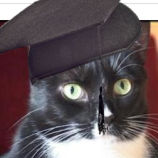 How Useless Are Diploma Mills? This Cat Got One