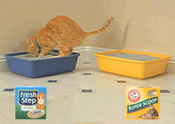 "Arm & Hammer Sues Fresh Step Because ""Cats Don't Talk"""