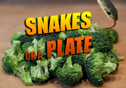 Snake Head On T.G.I. Friday's Plate Wasn't Cooked With Broccoli