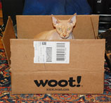 Database Bug At Woot Leaves Reader Wary Of Ordering