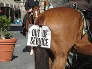 Economic Downturn Puts Police Horses Out To Pasture