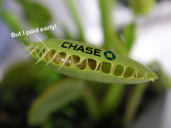 Chase Sets Early Payment Trap, Customer Falls Into It