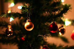 Christmas Trees Sales Perk Up To Pre-Recession Levels