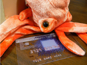 Guess Who May Be Footing The Bill For Credit Card Reform — It's Not The Octopus