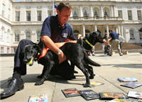 The MPAA's New Secret Weapon: DVD Sniffing Dogs!