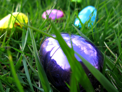 Kids' Fun Ruined When Easter Egg Hunt Is Canceled Due To Aggressive Parents