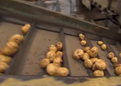 From Spud To Your Taste Buds: How Frito-Lay Chips Are Made