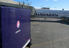 Hawaiian Airlines Tops Quality Study, American Eagle Falls Flat