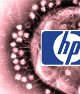 After Massive Runaround, HP Sends Your Laptop Back Filled With Viruses