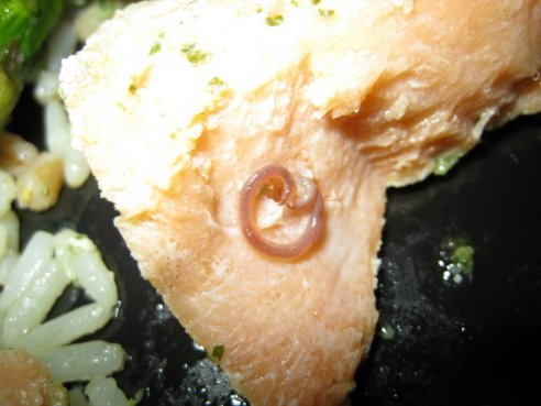 Trader Joe's Salmon Comes With Delectable Organic Free-Range Worm