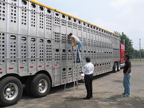 "Federal Government Boldly Declares: ""It Is Impossible To Inspect Our Way To Safety"""