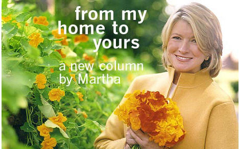 Lawsuit: Martha Stewart Dishes Not Microwave Safe