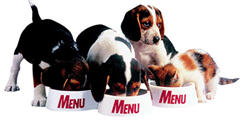 Menu Foods Bullies Pet Owners To Settle Food Contamination Lawsuits