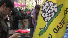 Video: Meet Your Wall Street Occupiers