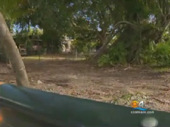 Miami Official Creates A Park For Sex Offenders To Keep Them Away From Kids