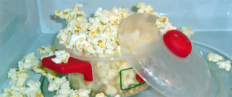 "First Consumer ""Popcorn Lung"" Case Found"