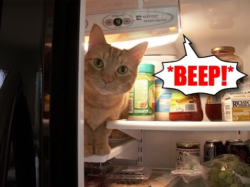 This !@#$% KitchenAid Refrigerator Won't Stop !@$% Beeping!