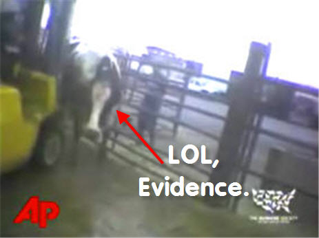 Cow Abuse Meatpacking Boss Reluctantly Admits To Tainting The Food Supply