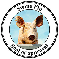 Swine Flu: Over 57 Million Americans Served