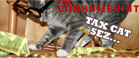 Tax Cat: Help! I Owe The IRS Money And I Don't Have Any!