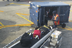 Baggage Handler: I Was Fired For Helping Sick Dog