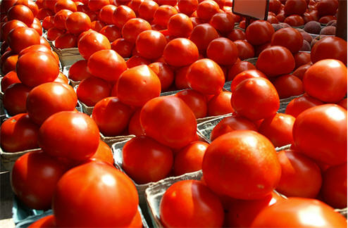FDA: Go Ahead And Eat Tomatoes, We Give Up