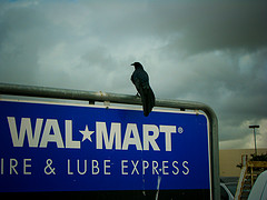 Long-Running Mouse Infestation May Shut Down N.Y. Walmart