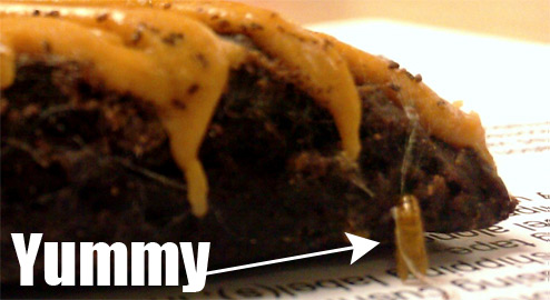 Man Finds Meal Worms In Reese's Brownie, After Taking Big Bite