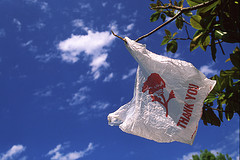 "Student Group Tells Santa Fe To Ban Plastic Bags To Help ""Everybody In The Universe"""