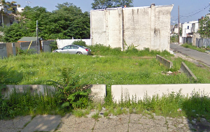 Man Spends $20,000 To Clean Up Vacant Lot, City Says He's A Trespasser