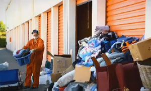 Opinion you storage unit in mouse droppings