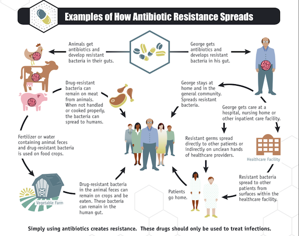Cdc 2 Million Americans Get Sick From Antibiotic Resistant