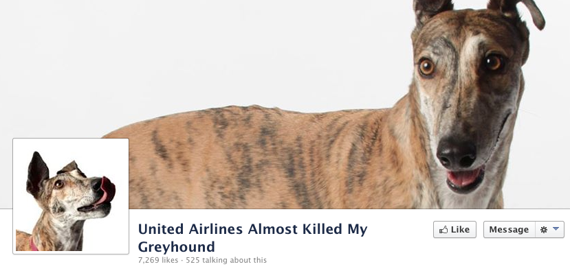 The Facebook page the dog-owner made after United asked her to sign a non-disclosure agreement.
