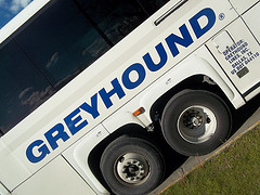 Greyhound Driver Brings Bus To A Stop While Defending Himself Against Passenger Attack