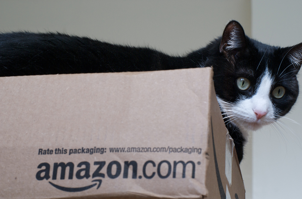 Amazon Reportedly Working On New Shipping Service That Turns Ordinary People Into Couriers