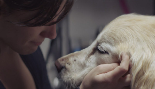 Chevrolet Commercial Makes Dog Lovers Sad, Doesn't Sell Cars: Is It Real?