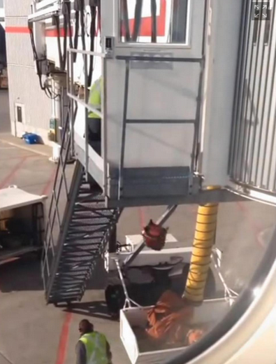 Airline Apologizes For Baggage Handlers Caught Dropping Luggage From Height Of 20 Feet