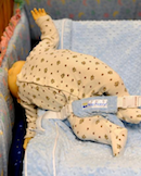 CPSC: Sixth Infant Death Linked To Recalled Nap Nanny Recliner