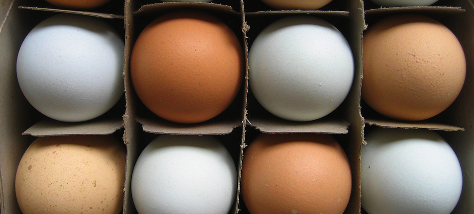 Target Will Sell Only Eggs From Cage-Free Hens By 2025