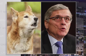 FCC Chair Tom Wheeler Says He Is Not A Dingo
