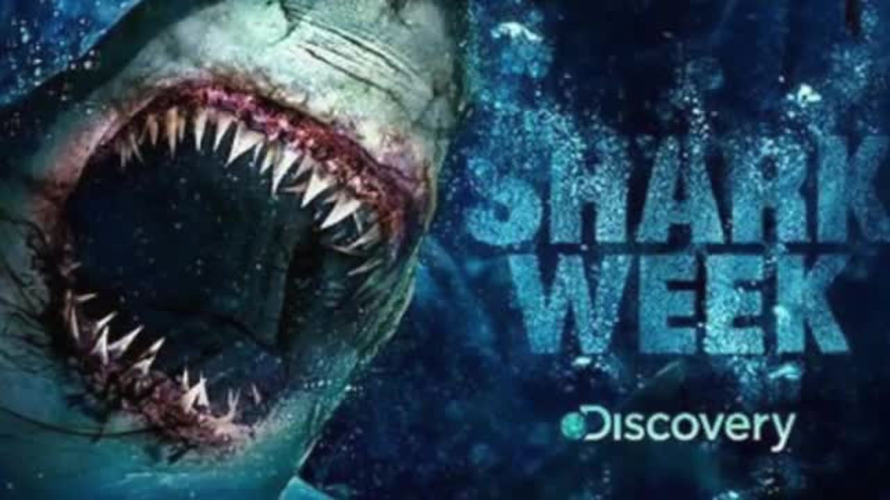 Discovery Not Afraid of Sharks Or Comcast; Comes Out Against Merger