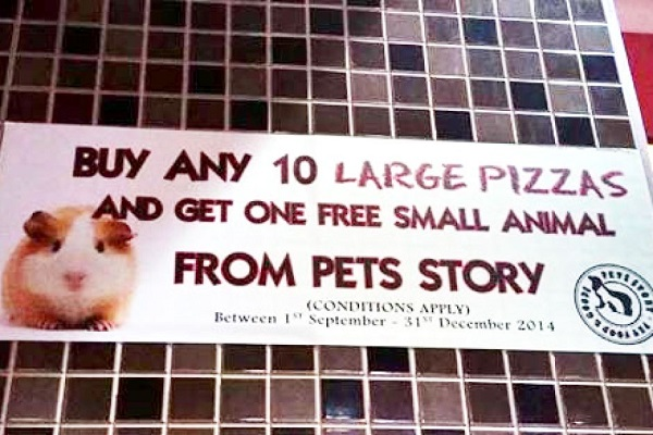 Pizza Hut Australia Is Not Handing Out Free Hamsters With Purchase