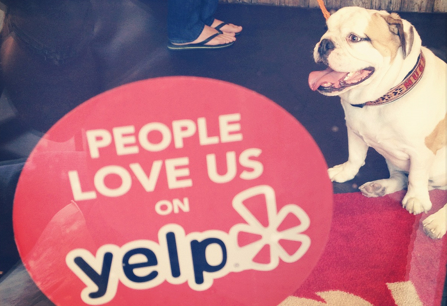 Obedience School Sues Yelper For $65K Over Negative Review