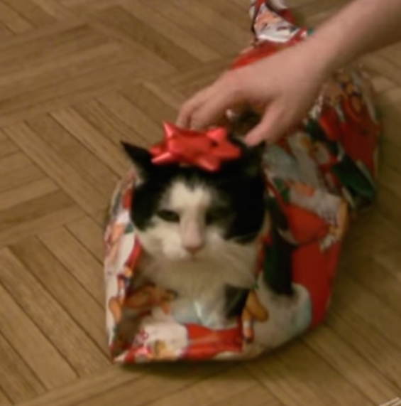 A Holiday Classic For Our Time: How To Gift-Wrap A Cat