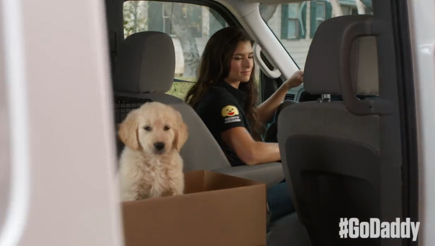 GoDaddy Pulls Super Bowl Ad Featuring Danica Patrick Amid Puppy Mill Complaints