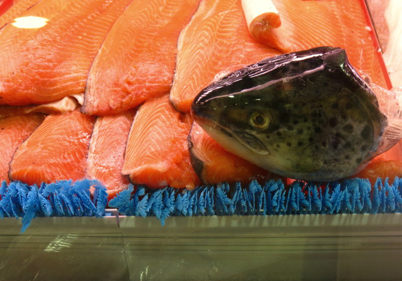 FDA Signs Off On Genetically Modified Salmon Without Labeling