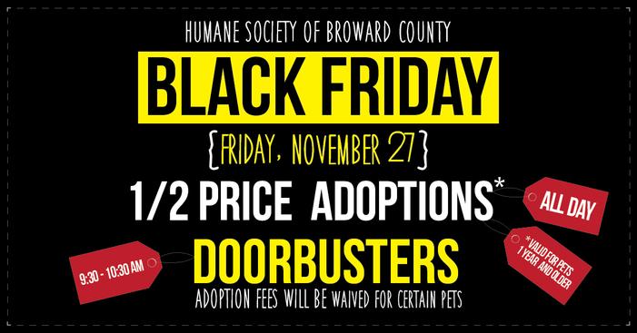 More Animal Shelters Holding Black (Fur) Friday Adoption
