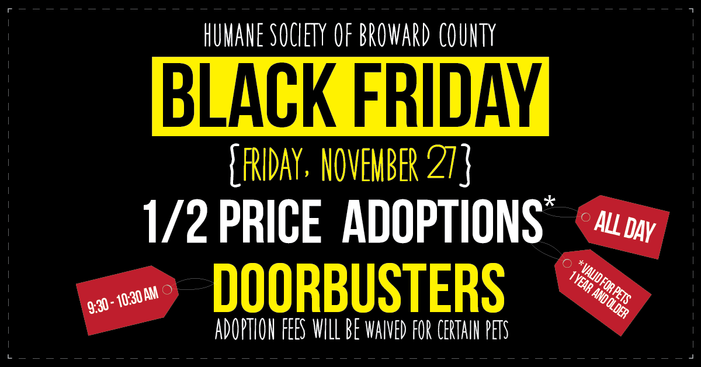 More Animal Shelters Holding Black (Fur) Friday Adoption Promotions